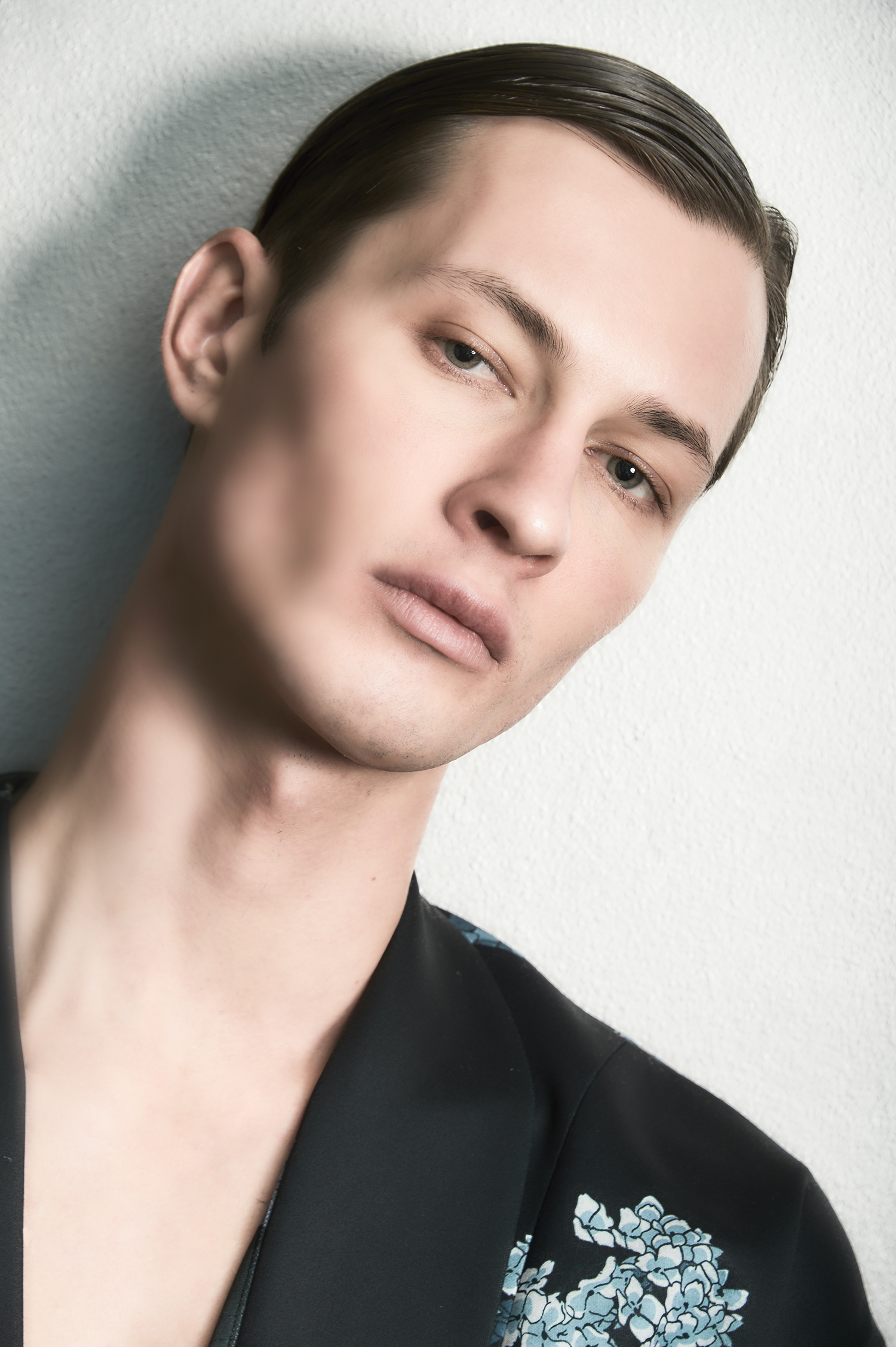 """Dima Dionesov model"""