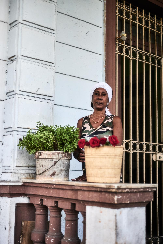 """""""cuban florist"""""""